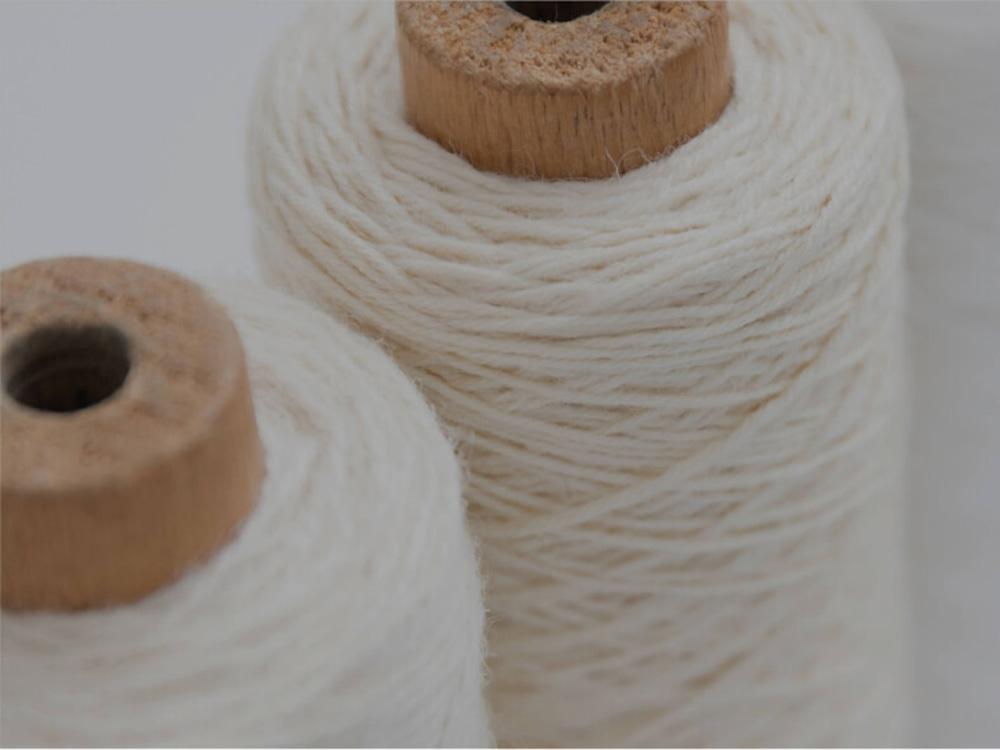 天然繊維という選択 ―カシミヤとファインウール