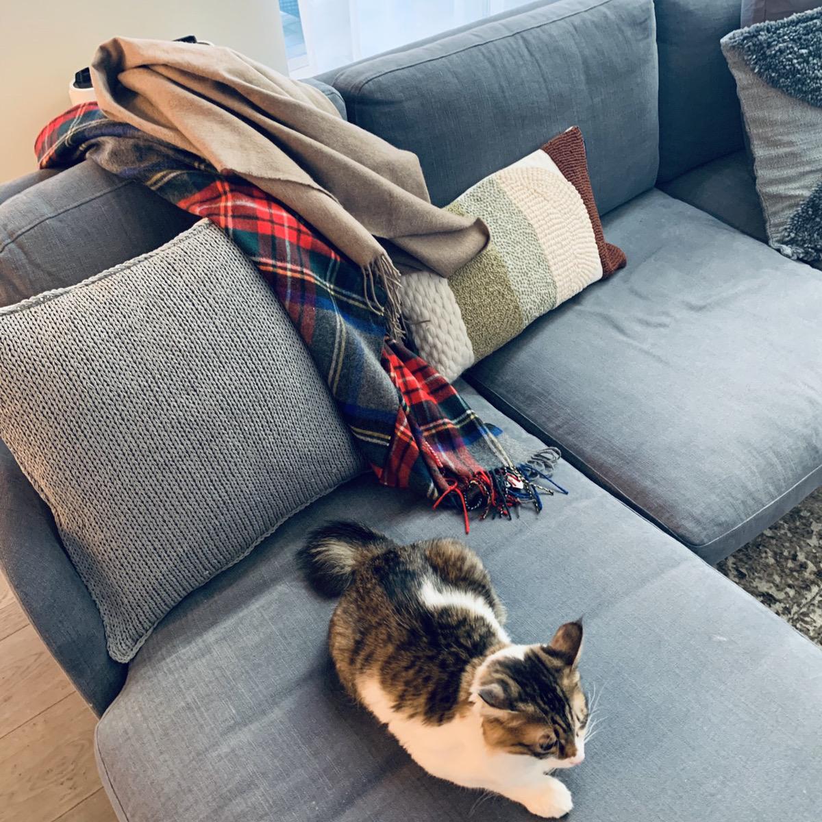 お家時間もフルに楽しんで、暖かさと温もりを家でも楽しみます。